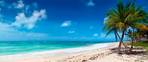 Picture of a holiday in Barbados
