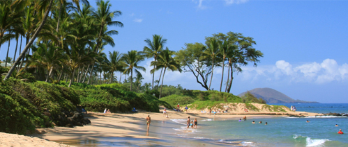 Picture of a holiday in Hawaii