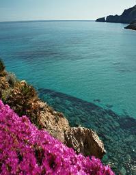 Island-vacations